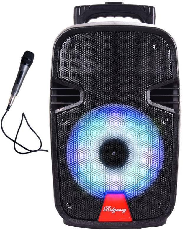"Ridgeway QS-10 10"" Portable Bluetooth Speaker"